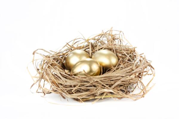 Nest Eggs Retirement Options resized 600