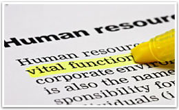 Outsourced HR Managment