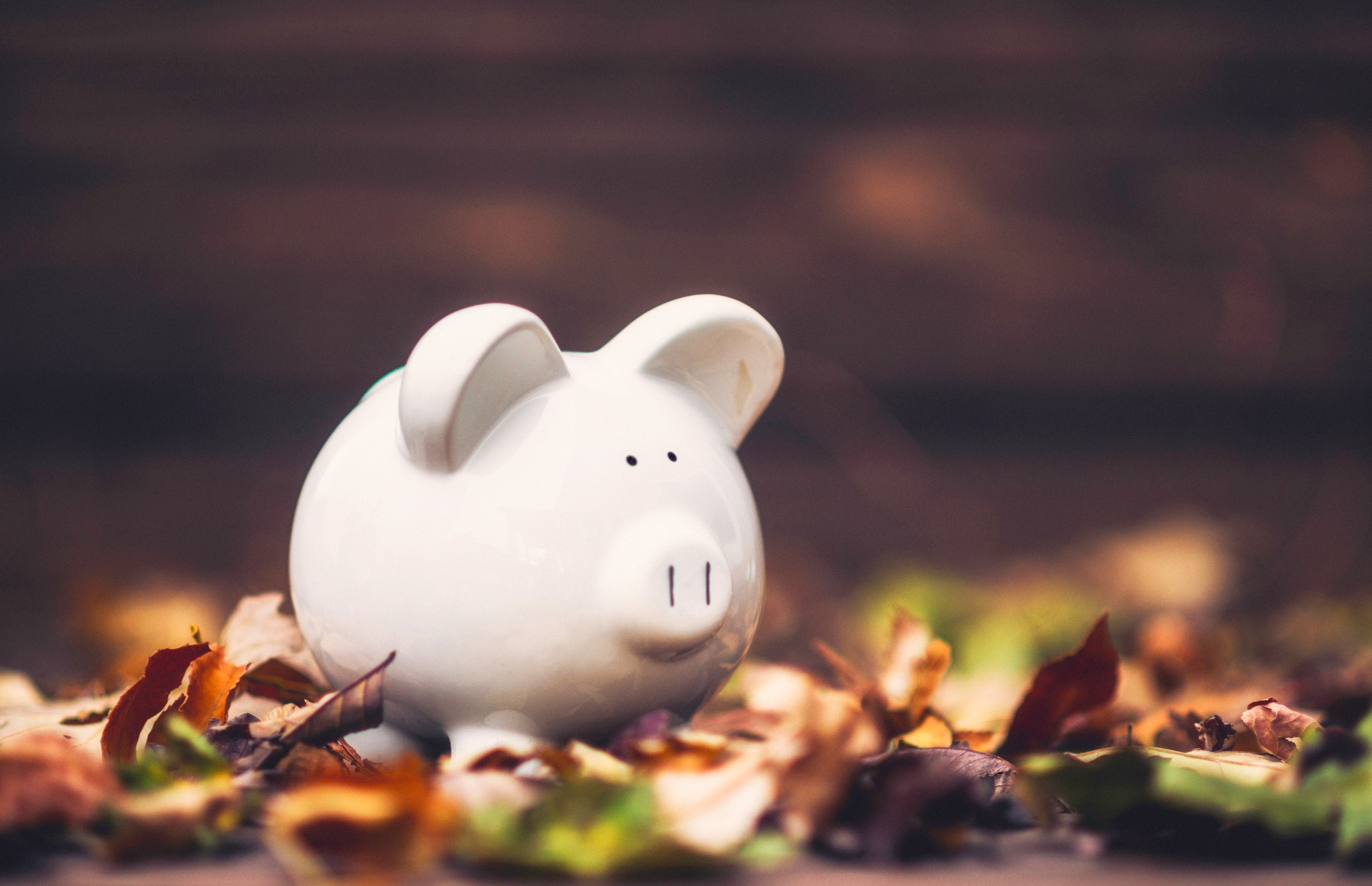4 Ways Small Businesses Can Achieve Payroll Success This Fall.jpg